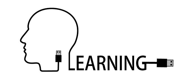 Learnership Logo